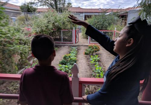 The school garden program at Manzo Elementary School, supported by the UA Community and School Garden Program, teaches students how to cultivate desert-adapted foods that are served in the school cafeteria.