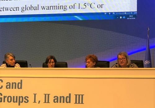 Liverman  with Debra Roberts, Valerie Masson and UA alumna Petra Tschakert at the IPCC 48th Session in Incheon, Republic of Korea. The meeting, held Oct. 1-5, brought the authors together with government delegates to negotiate the final wording of the Sum