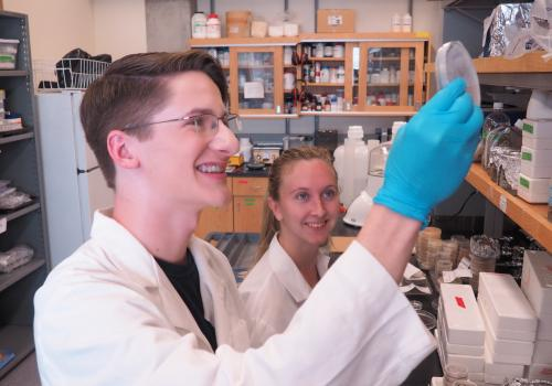 """Kyle Kline , a 2017 KEYS alumnus, worked in the lab of Betsy Arnold . Kline, who will be a UA freshman this fall, said, """"KEYS took science beyond the textbook. During my time at the UA, I was able to sample the life of a researcher and begin to understand"""