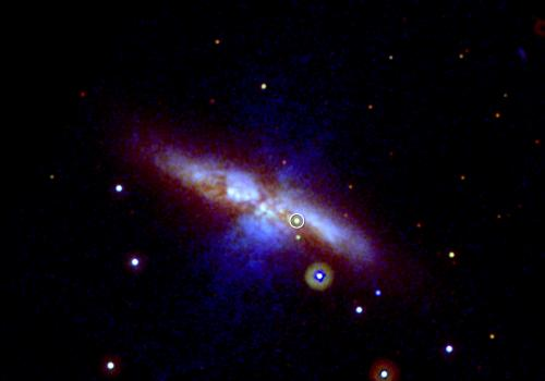 Swift's UVOT captured the new supernova  in three exposures taken on Jan. 22, 2014. Mid-ultraviolet light is shown in blue, near-UV light in green and visible light in red. Thick dust in M82 scatters much of the highest-energy light, which is why the supe