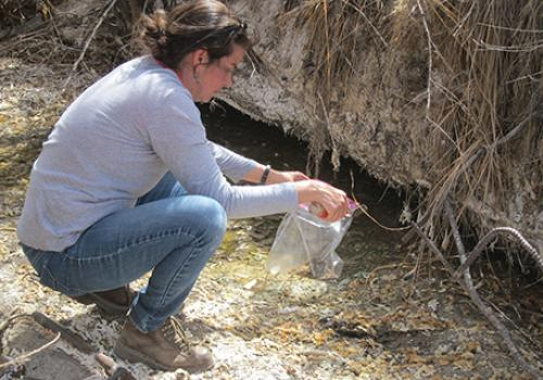 Paloma Beamer, associate professor and environmental engineer with the UA Mel and Enid Zuckerman College of Public Health, takes a sediment  sample near Shiprock, New Mexico, to investigate the effects of the Gold King Mine spill on Navajo lands.