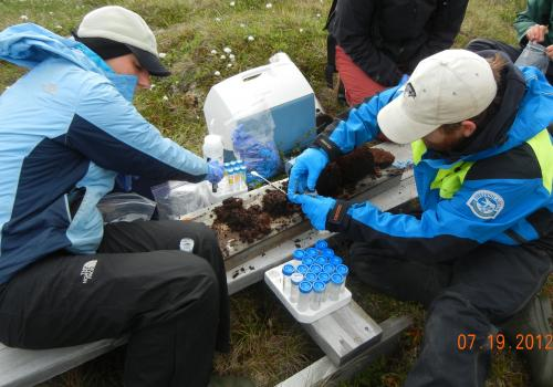 ... and process the samples in a field lab.