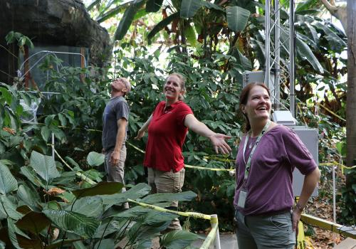 Biosphere 2 research specialist Jason Deleeuw, UArizona assistant professor Laura Meredith, and University of Freiburg postdoctoral fellow Ines Bamberger enjoy the first drops of rain after a two-month rainforest drought.
