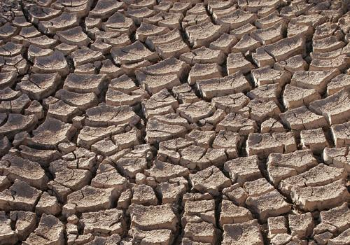 The U.S. Government Accountability Office has reported that as many as 36 states will experience a water shortage in the next five years.