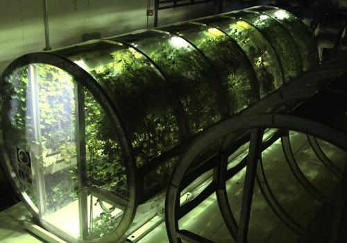 The lunar greenhouse, one of four planned modules that are being studied by the CEAC.