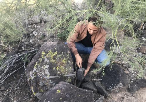 Student researcher Humberto Gurrola checks on a wildlife camera placed on Tumamoc Hill to monitor animal diversity.