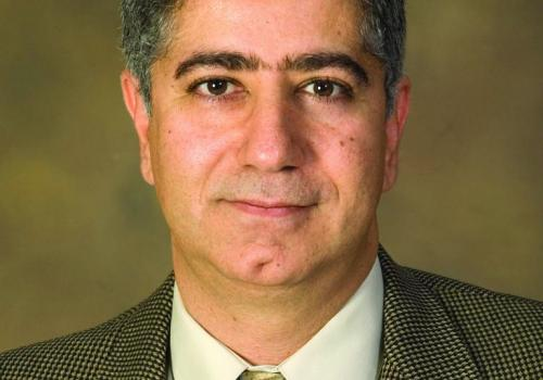 Marwan Krunz, Kenneth Von Behren Endowed Professor in electrical and computer engineering