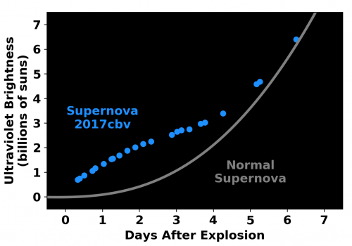 """Smoking gun: Unlike """"regular"""" supernovae, whose change in ultraviolet brightness follows the gray curve, this one increased in brightness faster over the first two days, before slowing down . This bump in the light curve likely reflects the slamming of ma"""
