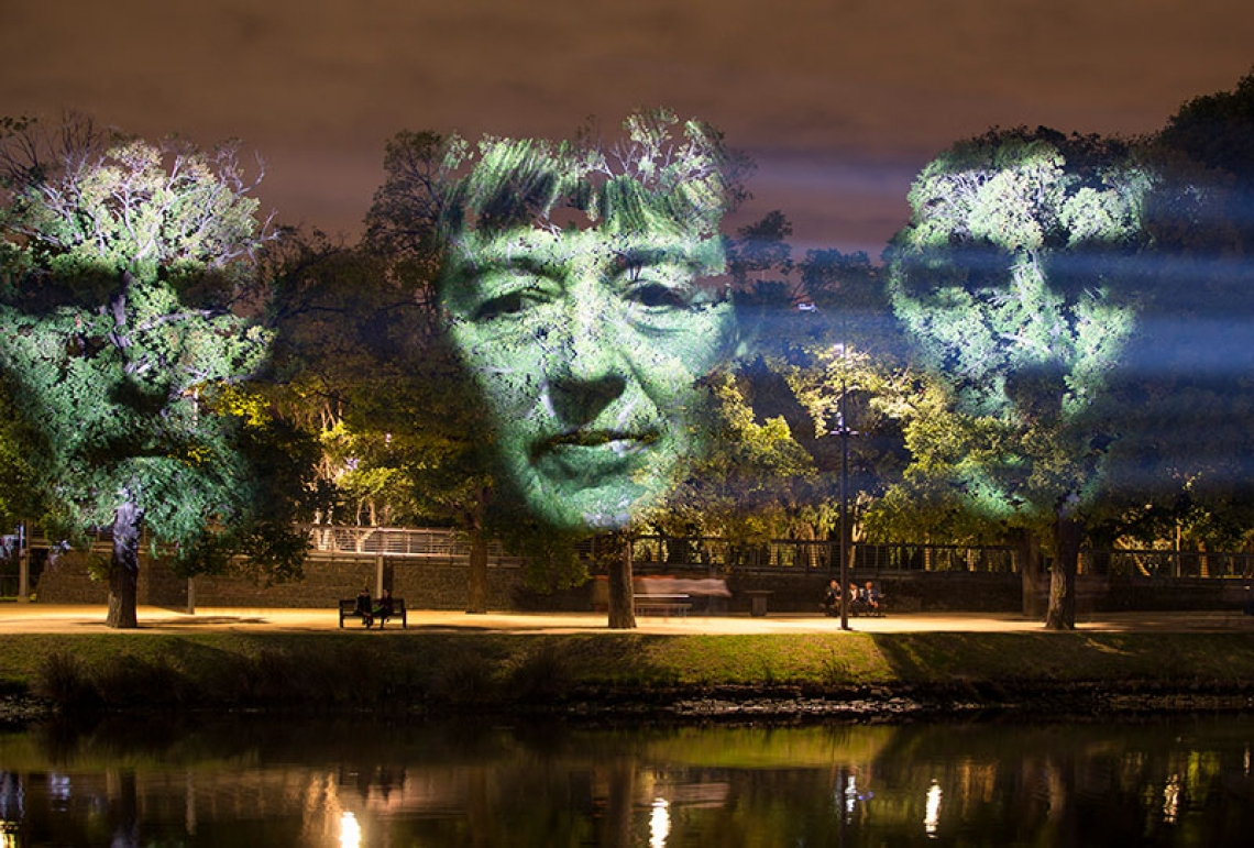 three faces projected on trees