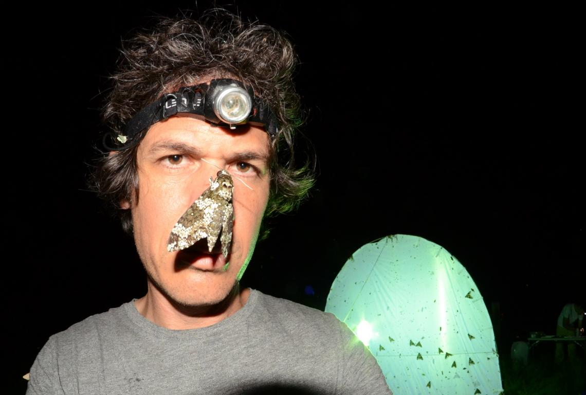 The lead author of the study, Eran Levin, gets up close and personal with a moth  during nocturnal field work in the Catalina Mountains near Tucson, Arizona.