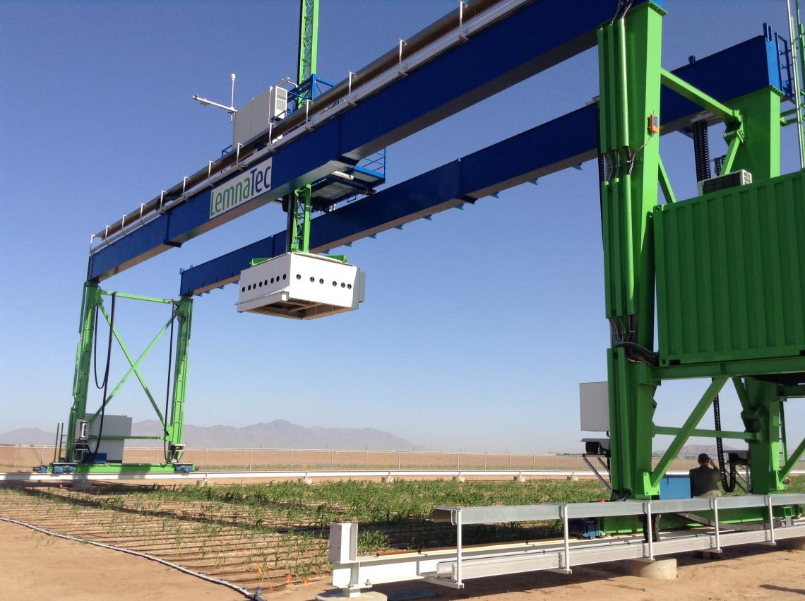 The world's largest robotic field scanner  is mounted on a 30-ton steel gantry moving along 200-meter steel rails over 1.5 acres of energy sorghum at the Maricopa Agricultural Center.