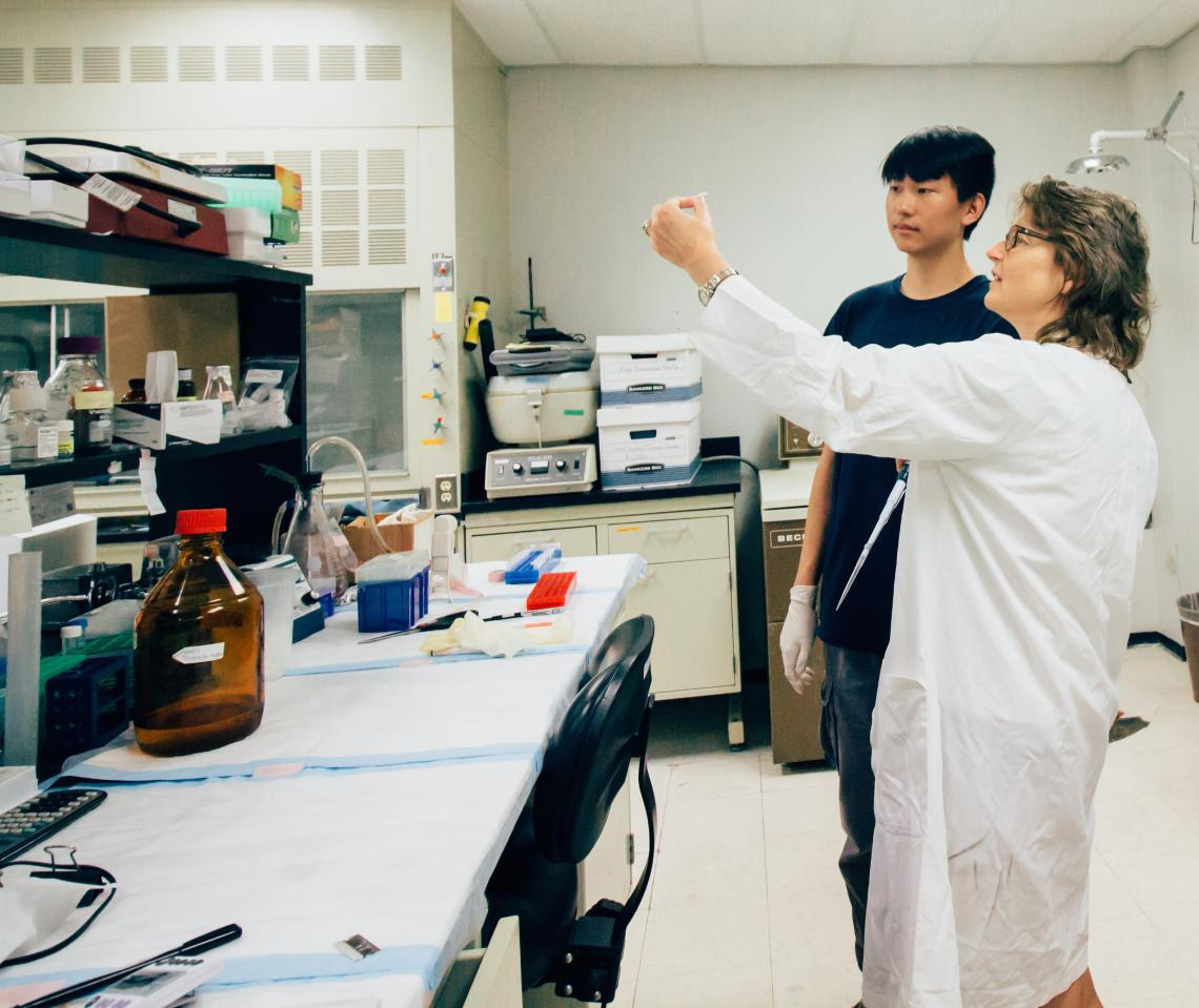 """Catherine Smith mentors high school student and KEYS intern Eugene Wang. """"I think it's important for high school students to understand what kind of options are out there for research careers,"""" said Smith, associate professor in the UA Department of Pharm"""