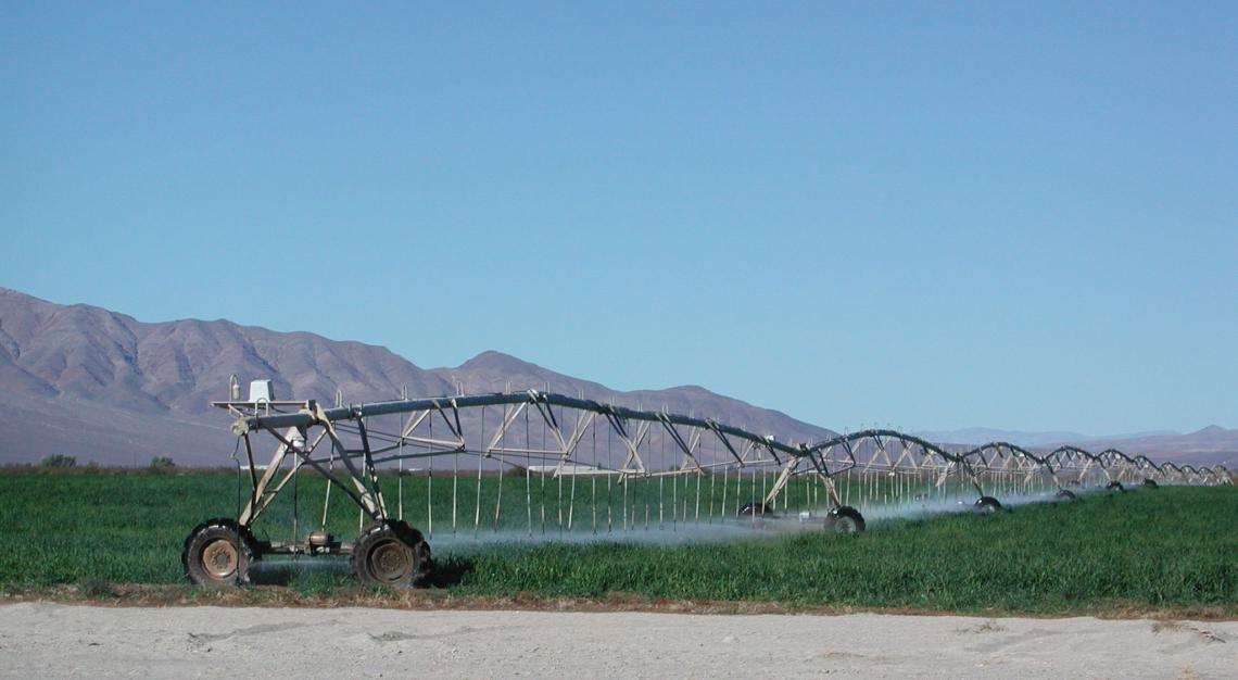 Irrigation in the Amargosa Desert on the California/Nevada border uses water from the Death Valley Regional Aquifer.