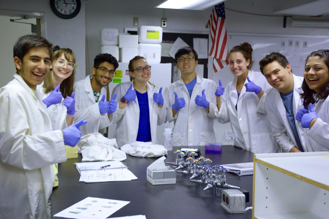 2018 KEYS interns pose with their successful protein gel during biotechnology training.