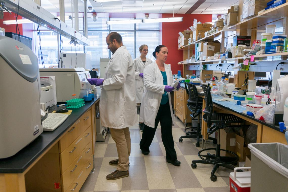 Researchers in the lab of Dr. Janko Nikolich-Zugich at the UA