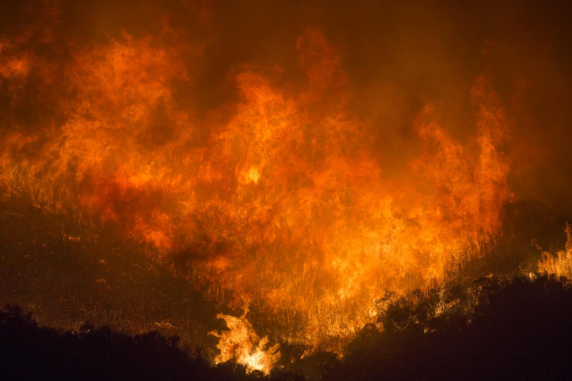 The Thomas Fire devastated parts of California in 2017, burning 281,893 acres, destroying 1,063 structures and damaging 280 more.