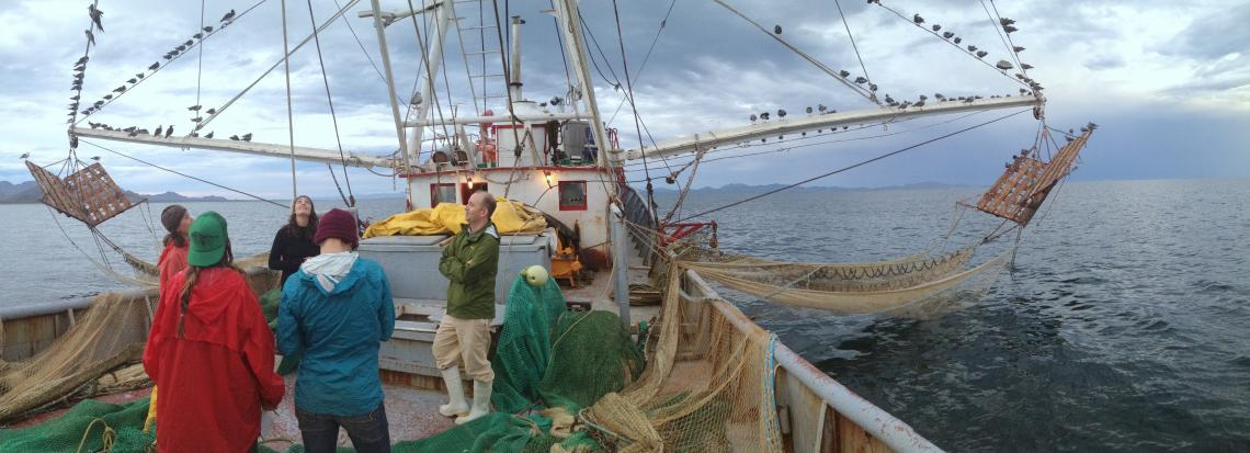 UA Arts, Environment and Humanities Network members Eric Magrane and marine conservationist Maria Johnson have been studying bycatch, the unwanted marine life caught in the nets of commercial fishers. Like other network members, Magrane and Johnson are tr