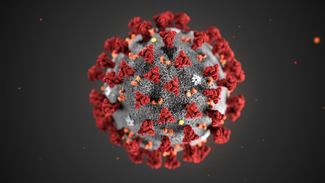 An illustration of the 2019 novel coronavirus. The virus was identified as the cause of an outbreak of respiratory illness first detected in Wuhan, China.