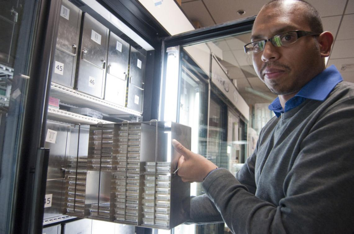 Krishna Veeramah, the study's first author, and his colleagues took advantage of the high-throughput DNA sequencing capabilities offered by the UA Genetics Core, housed at the UA BIO5 Institute.