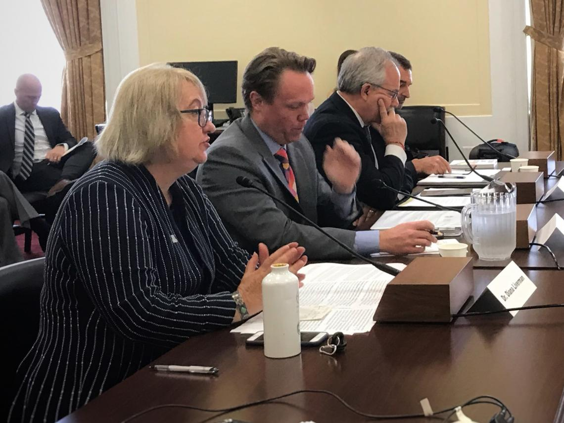 UA geographer Diana Liverman  testified on April 30 before the House Select Committee on the Climate Crisis.