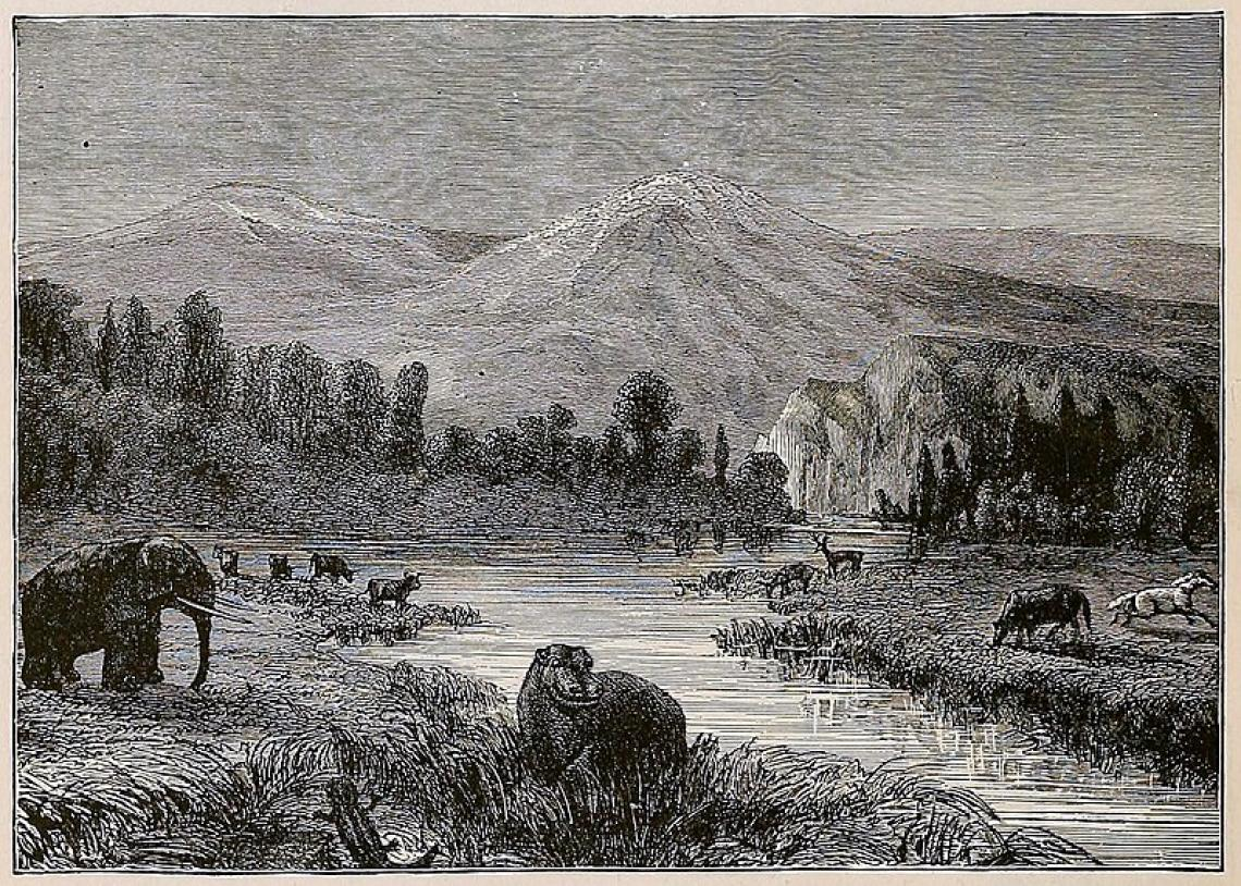 A wood engraving by Eduard Riou depicts a landscape view of the Pliocene. The image was etched in the late 1800s, when CO2 levels hovered around 295 ppm.