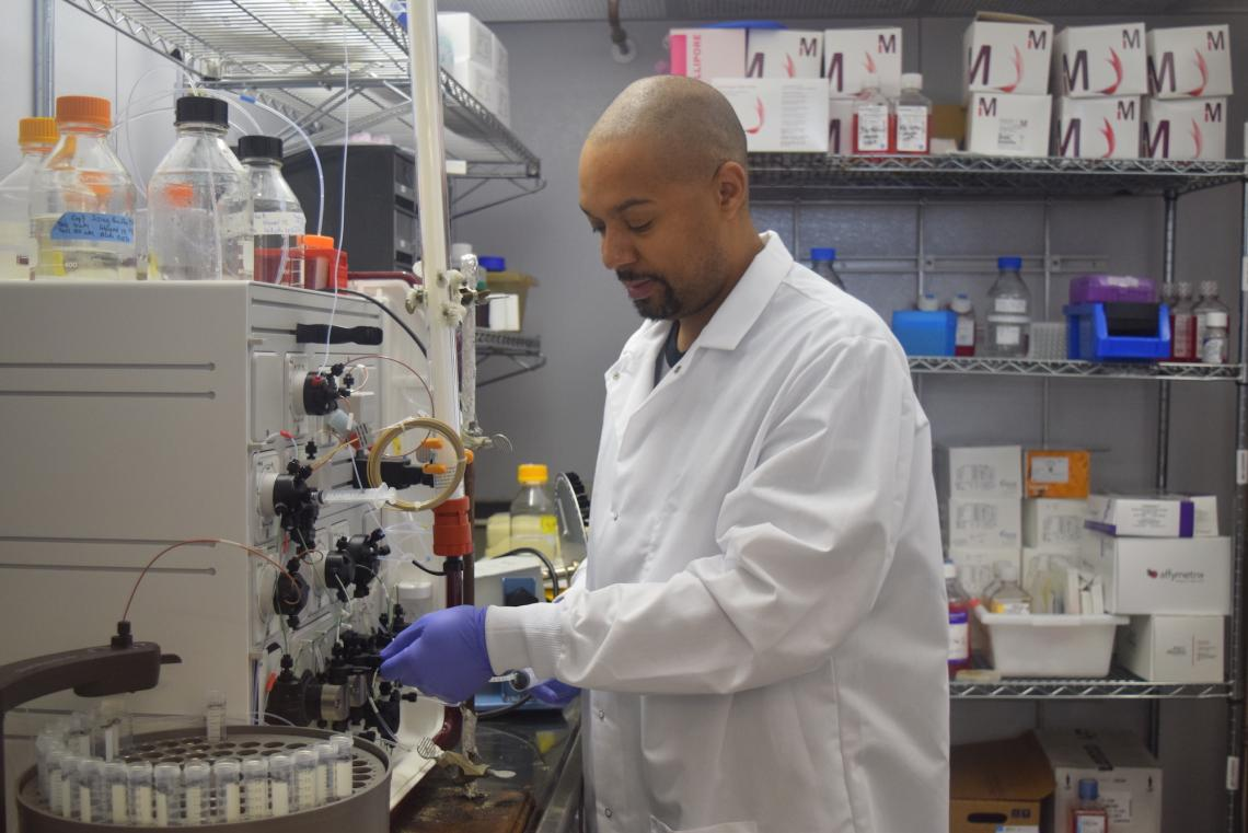 Several UArizona research teams, including one co-led by Michael Johnson, assistant professor of immunobiology, will investigate novel COVID-19 treatments.