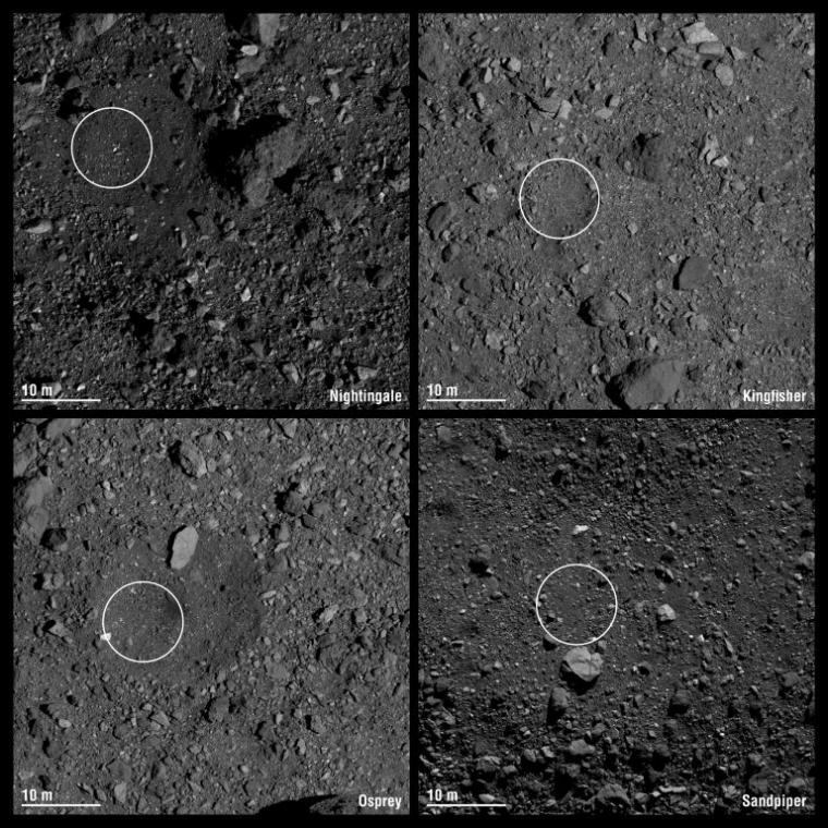 The final four candidate sample collection sites on asteroid Bennu are designated Nightingale, Kingfisher, Osprey and Sandpiper. Each circle has a 16.4 ft  radius. Credit: NASA/Goddard/University of Arizona