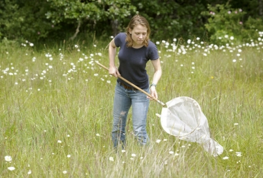 Uarizona data and citizen science professor Katy Prudic stalks butterflies witha net in the field