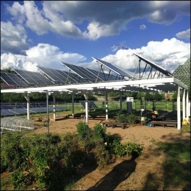 B2 agrivoltaics site