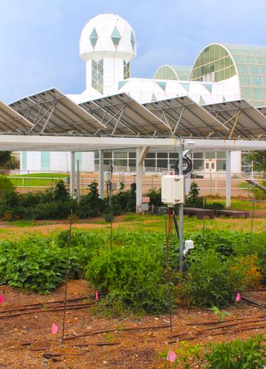 The agrivoltaic design at Biosphere 2.