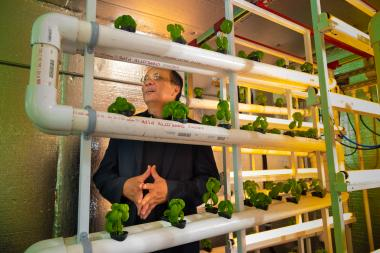 Joel Cuello believes minimally structured, modular, pre-fabricated vertical farm design systems will play an integral role in making vertical farms commercially feasible in the future.
