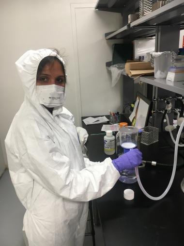 Shylaja Ramamurthy, a research specialist in the School of Animal and Comparative Biomedical Sciences, prepares hand sanitizer in a lab that typically works on bacterial infectious diseases.